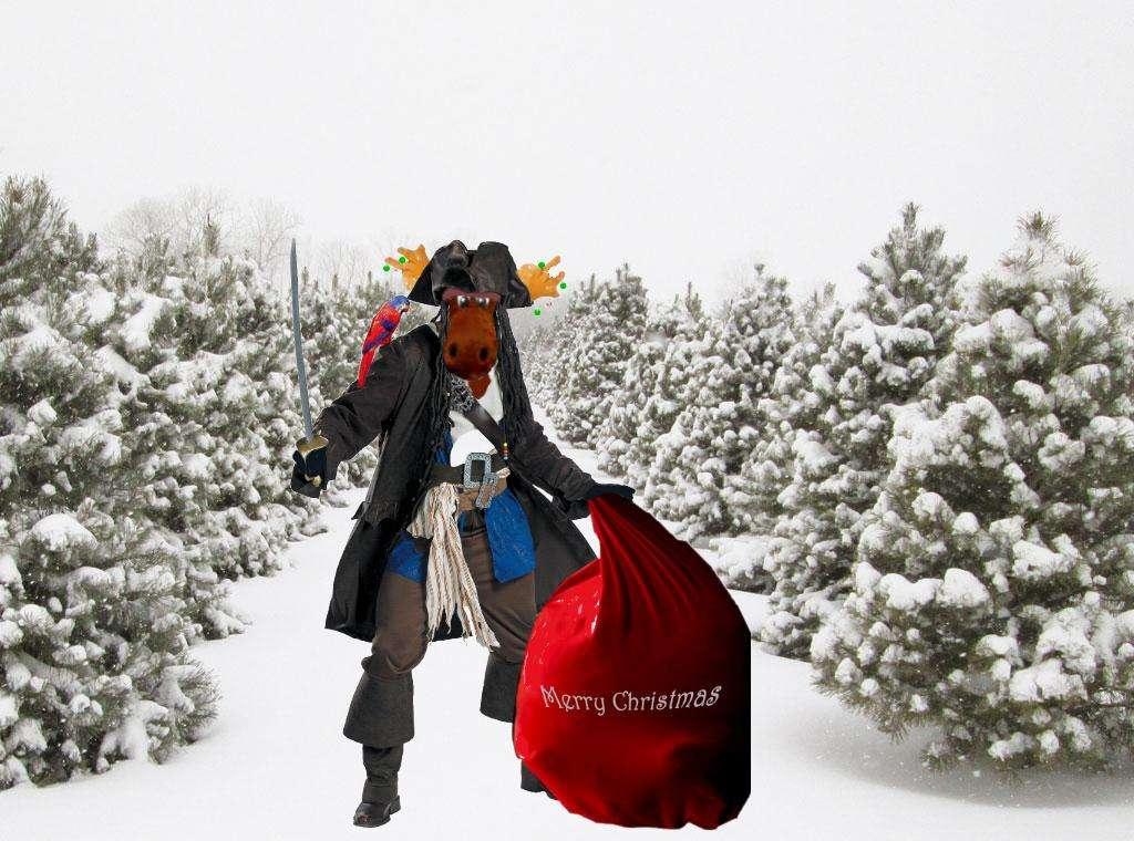 00 Pirate Moose Christmas.JPG