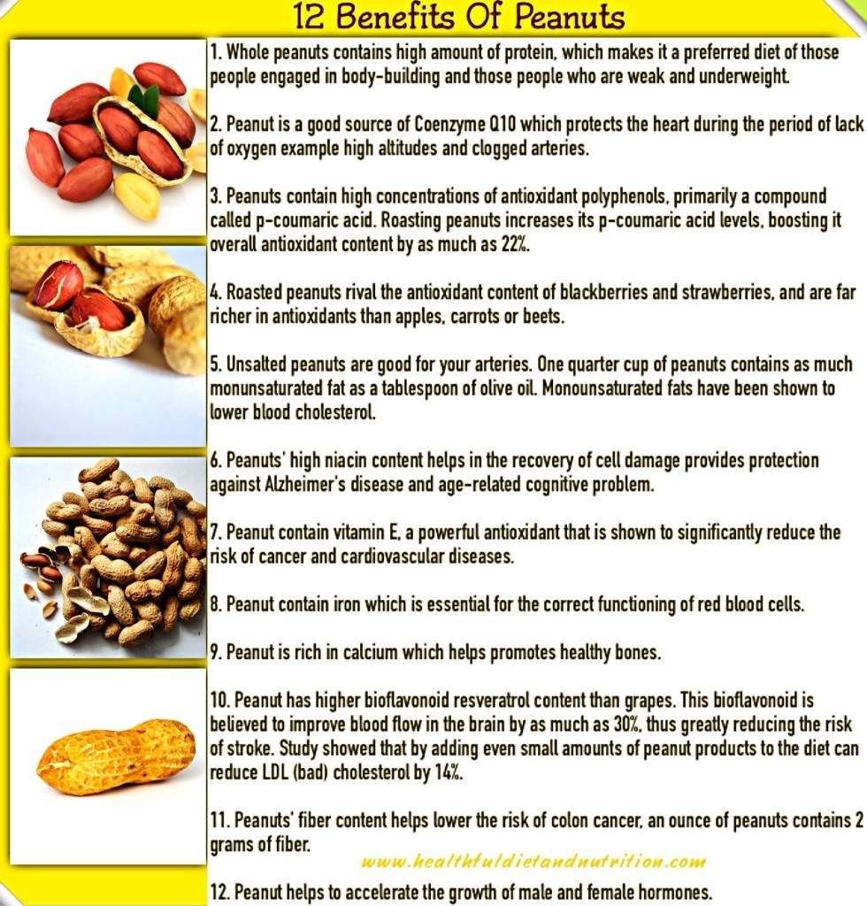 12-Benefits-of-Peanuts.-980x1024.