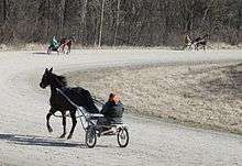 220px-Harness_Racing_Horses_in_Training_Salem_Township_Michigan.JPG