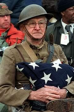 240px-Veterans_day.