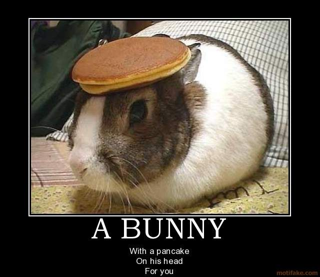 a-bunny-demotivational-poster-1247260960.
