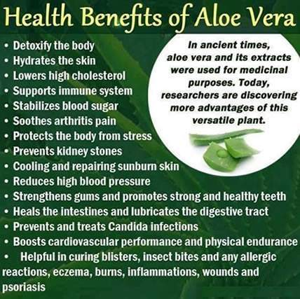 Aloe-Vera-Benefits.