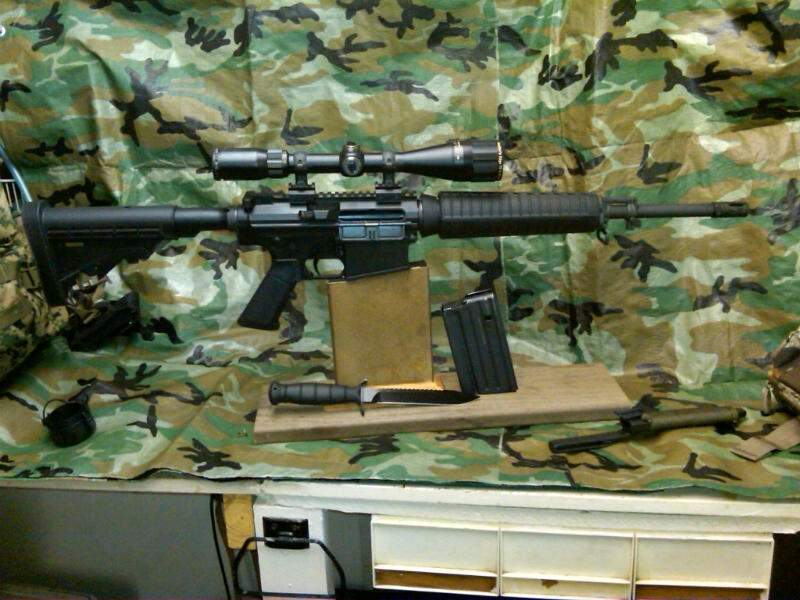 AR-10 085.