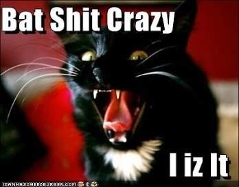 bat-s-crazy.
