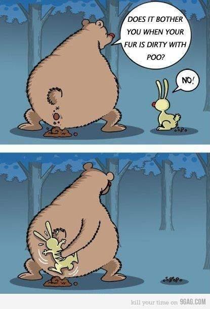 Bearpoo.