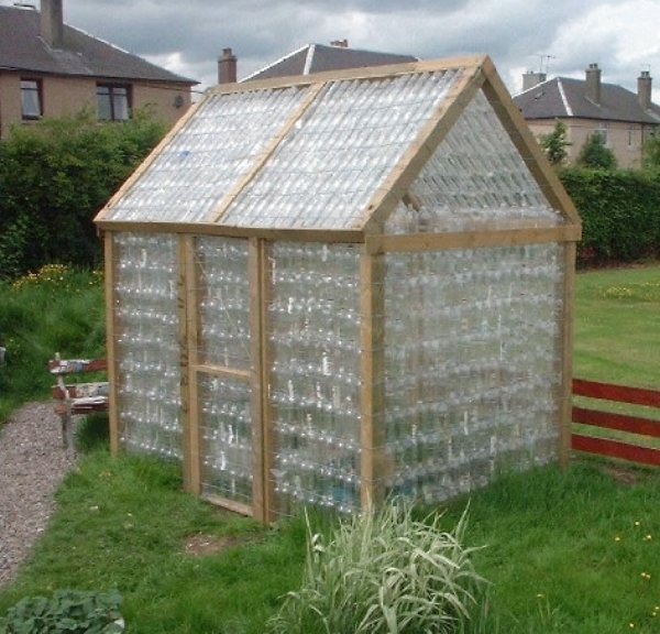 bottle%20greenhouse.JPG