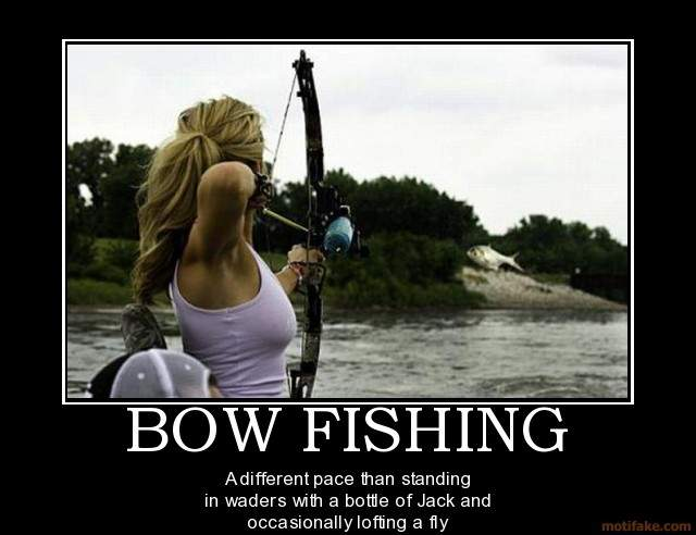 bow-fishing-nice-view-demotivational-poster-1279840159.