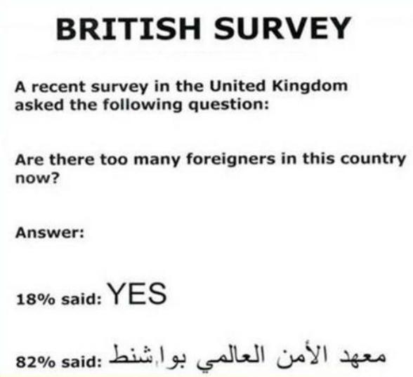 BritishSurvey.