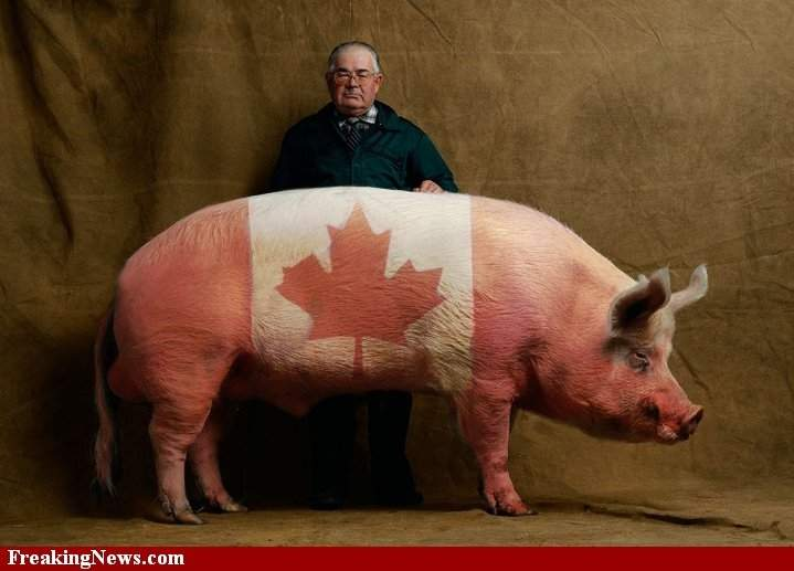 Canadian-Bacon--21001.
