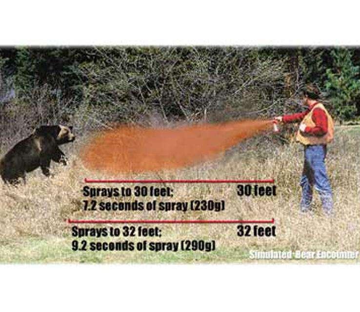 counter_assault_pepper_bear_sprays_1152088_2.