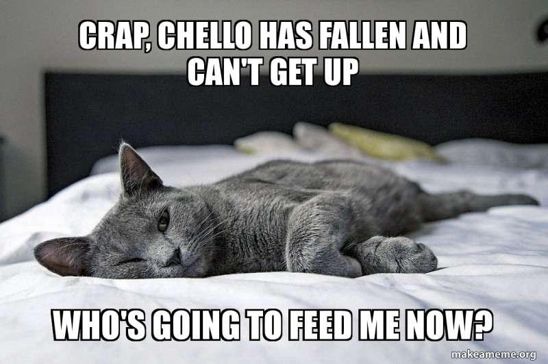 crap-chello-has.