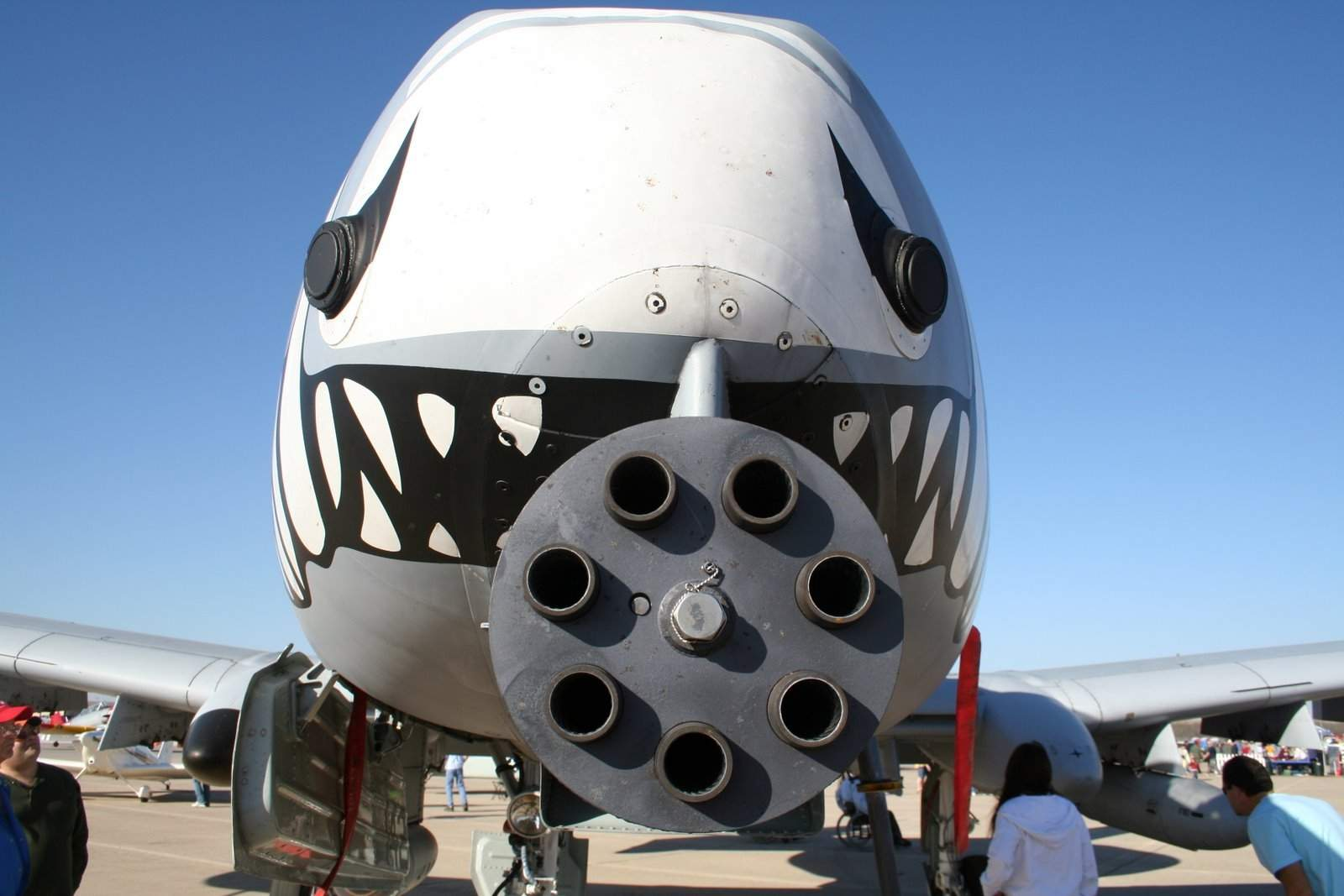 Fairchild_A-10-Gatling_Gun_Closeup.