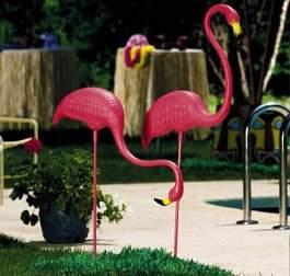 flamingos_141.