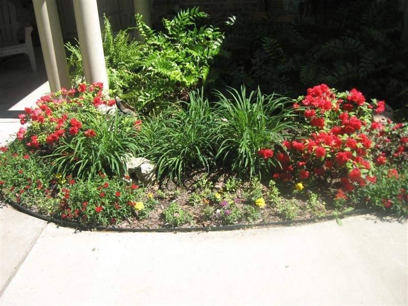 flowers in front (Medium).