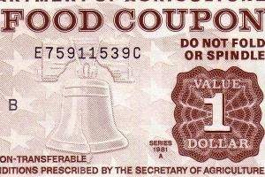 food_stamps-ts300.