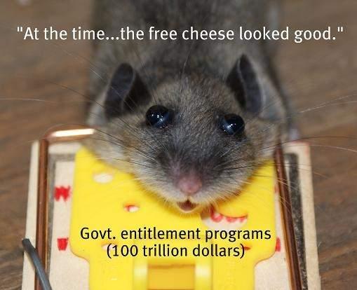 free cheese.a.JPG
