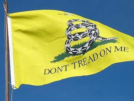 Gadsen-Flag.