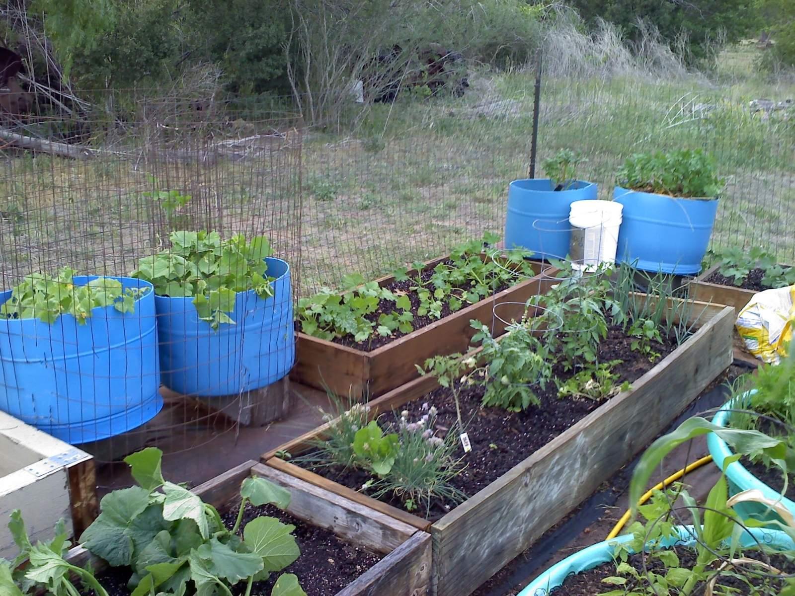 Garden 0501011908a.