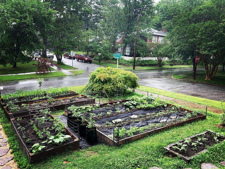 garden1.