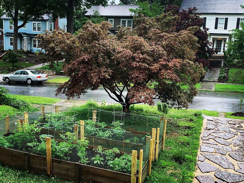 garden2.