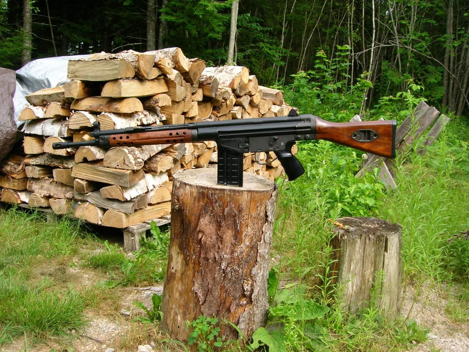 guns 019.