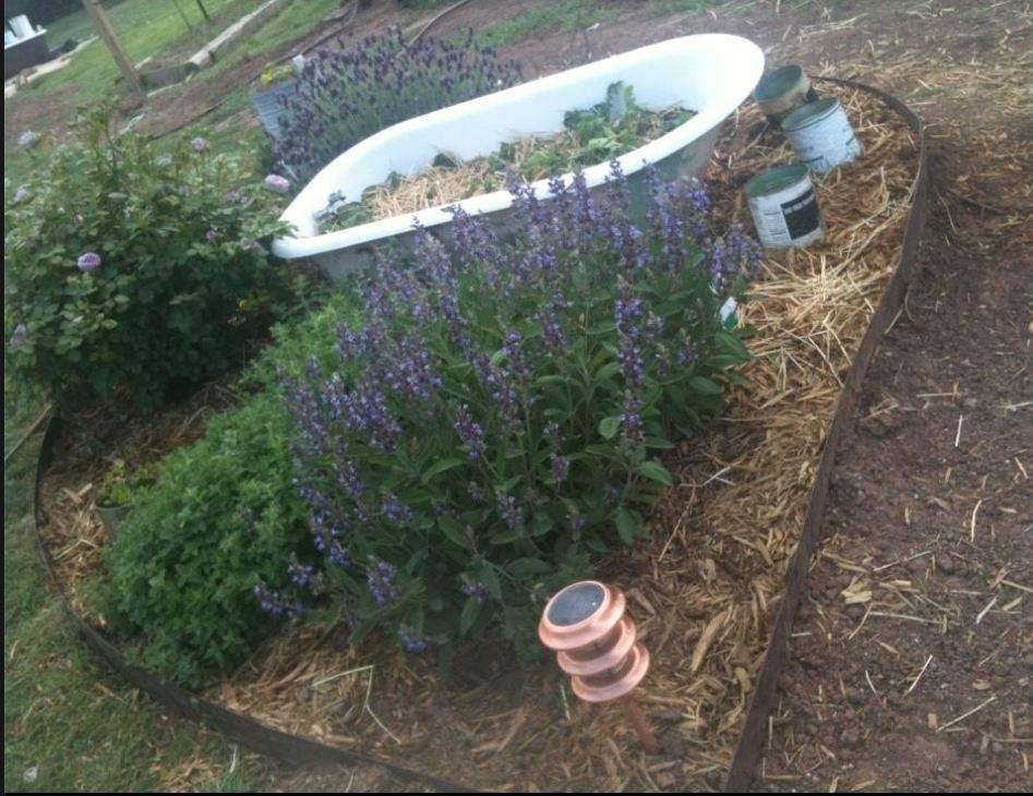 herb-garden.