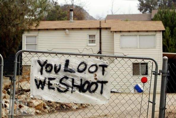 looters2682582.