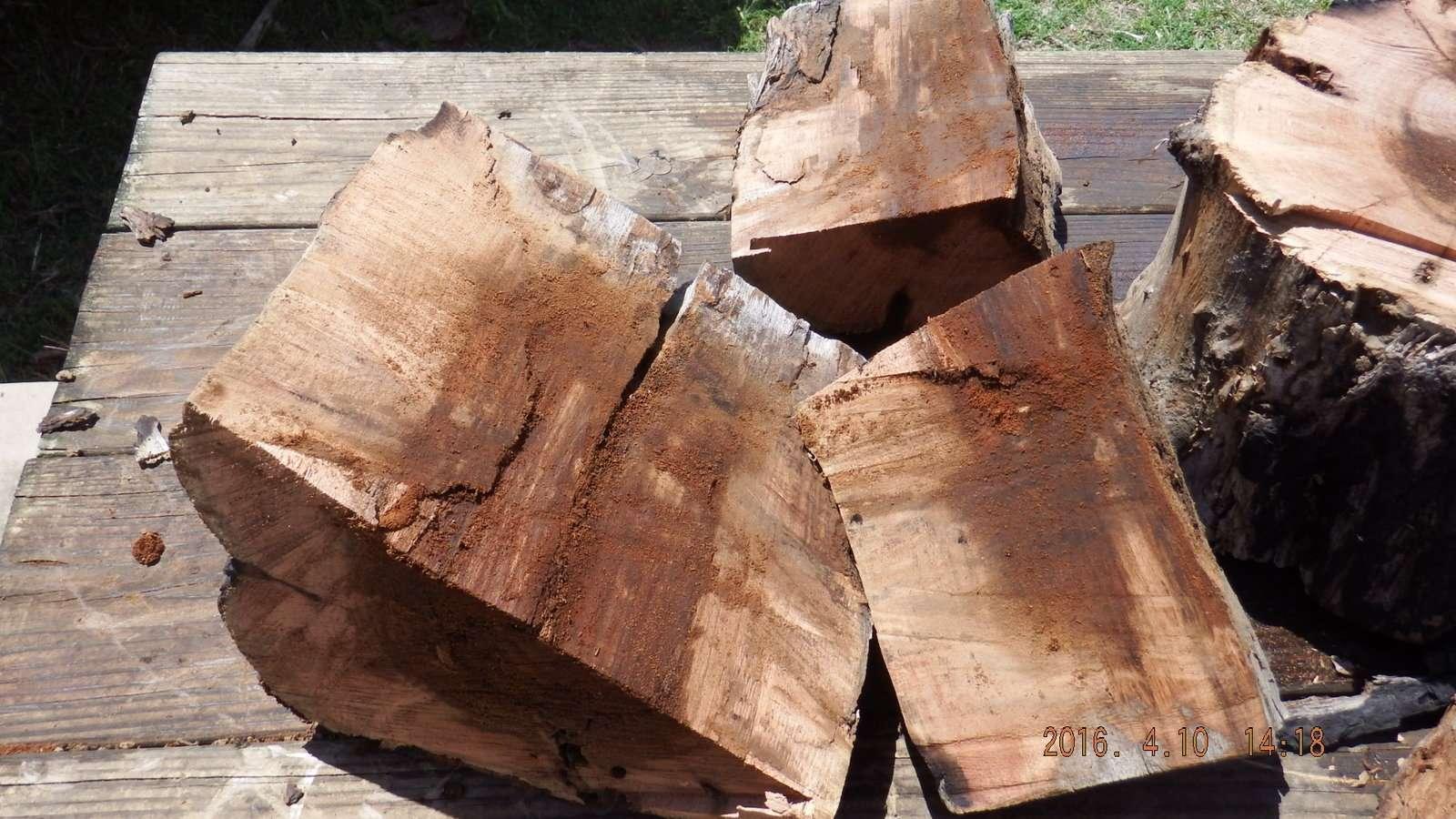 Mesquite Log Split before washing 1.JPG