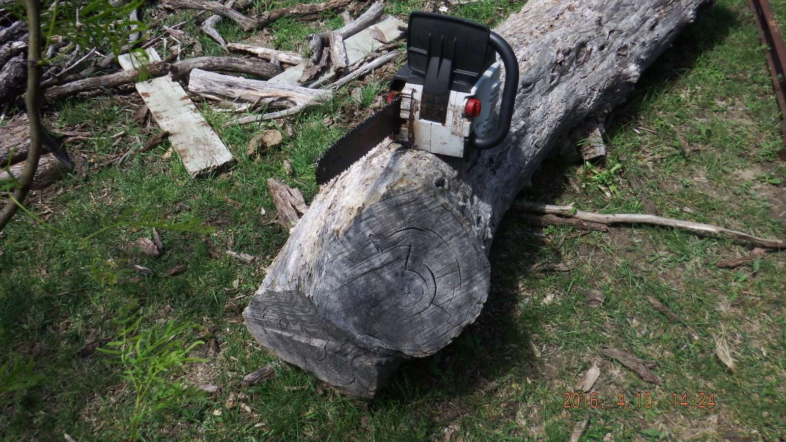 Mesquite Log with Saw  Several Years on the Ground 1.JPG