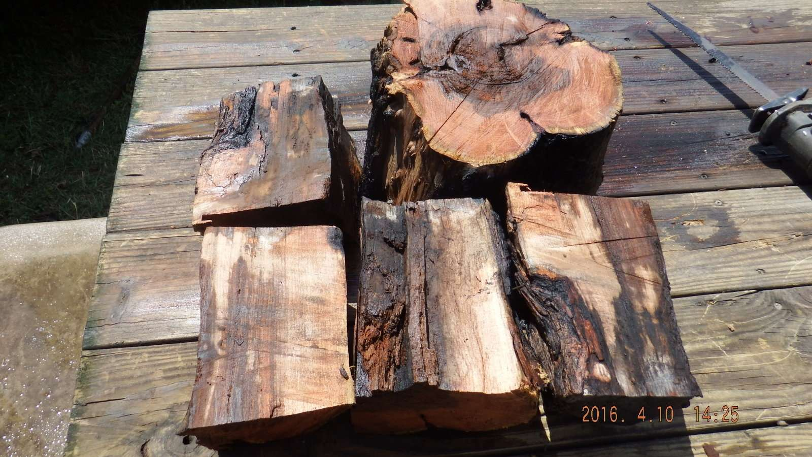 Mesquite Logs Split and Washed 1.JPG