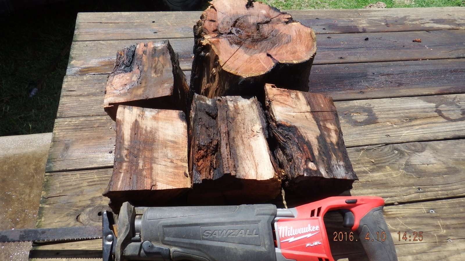 Mesquite Logs Splite after being washed 1.JPG