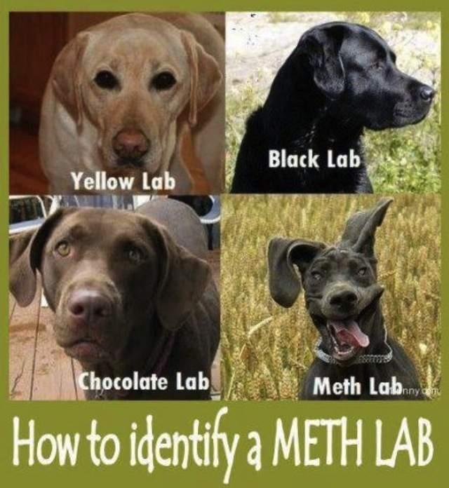meth-lab.