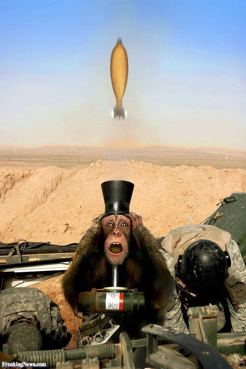 Monkey-Weapon--29929.