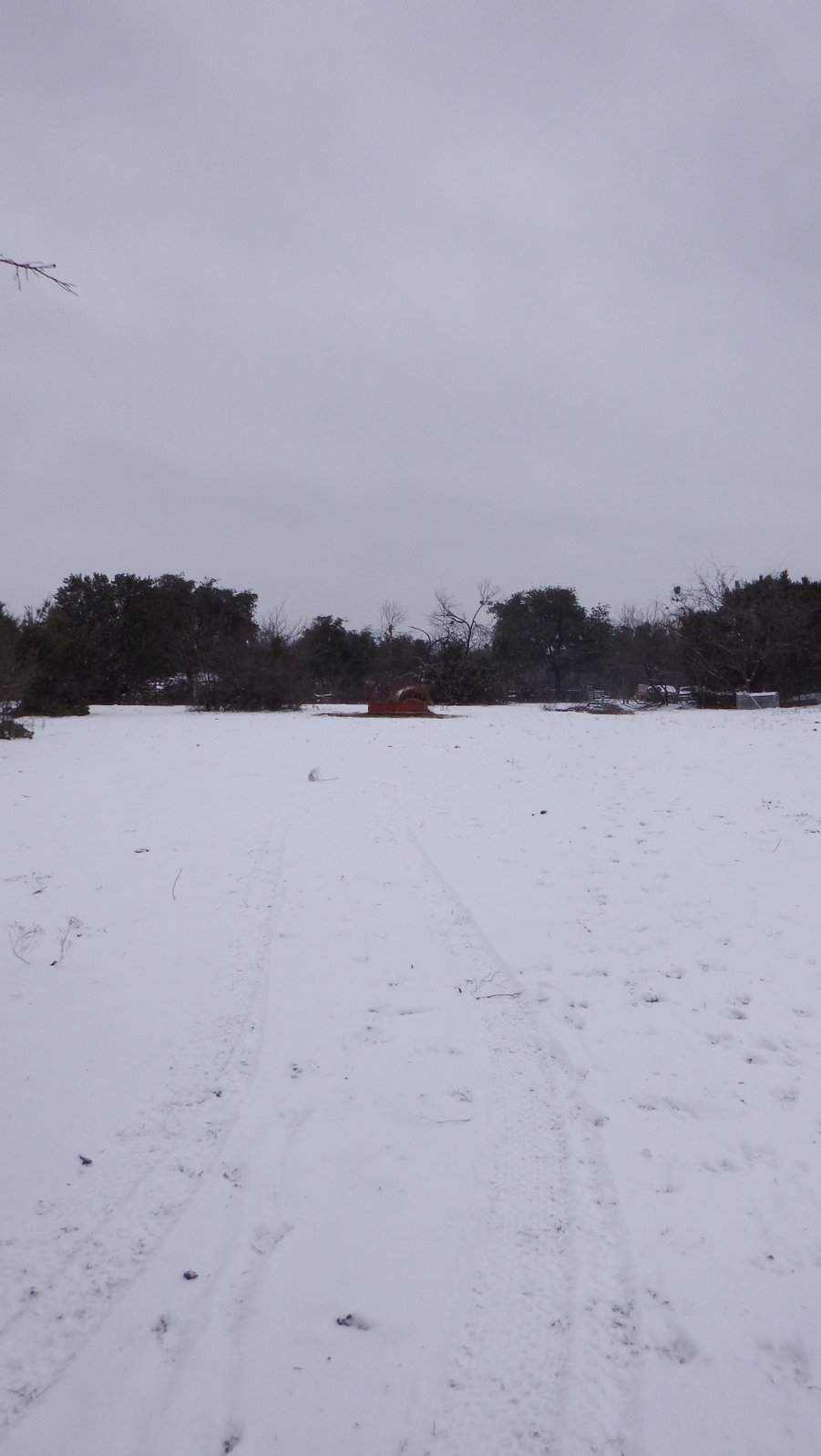 Snow and Sleet Day Trail in the snow.JPG