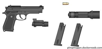 standard defensive handgun with accessories.