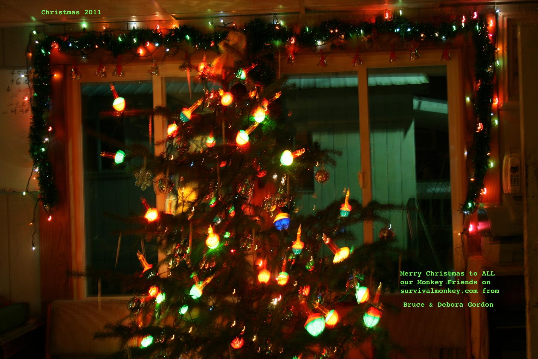 stego-Christmas-2011a.