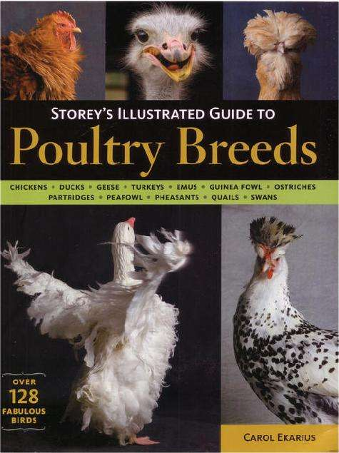 Storeys_Illustrated_Guide_To_Poultry_Breeds.