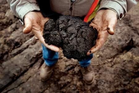 tar-sands-in-hands1.