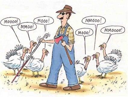 thanksgiving_173.