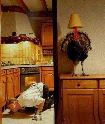 thanksgiving_175.