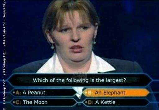who-wants-to-be-a-millionaire-funny-stupid-picture.