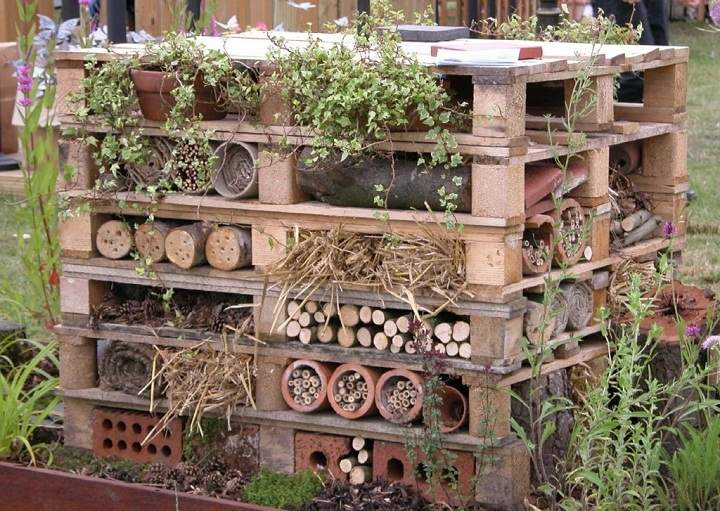 wildlife-trust-insect-hotel.