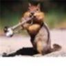 trumpetdoc