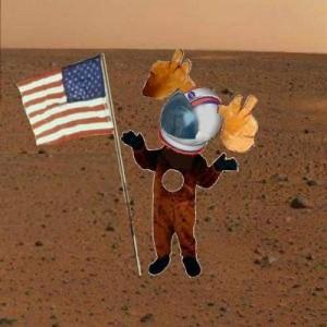 astronaut moose.JPG