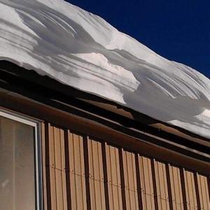 .snow 15a-020813.JPG