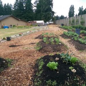 2014 Church Garden Project