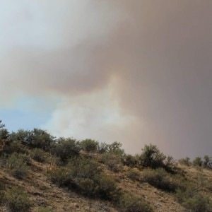 2012 Fire 5