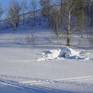 Quinzhee Winter Camp