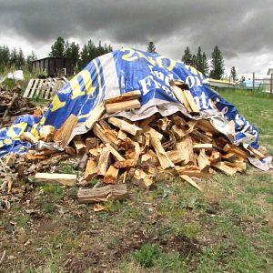 1st wood split in July 2016