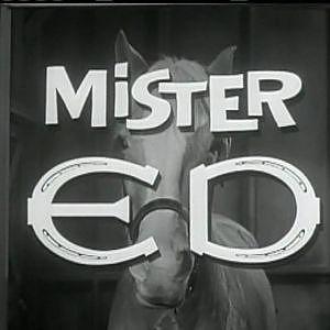 Mr. Ed Theme - YouTube